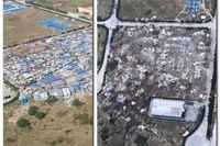 Italy must urgently protect evicted migrant workers from exploitation, say UN rights experts